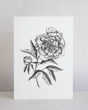 Load image into Gallery viewer, Illustrated Peony Print