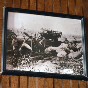 Vintage Picking Cotton Framed Photo