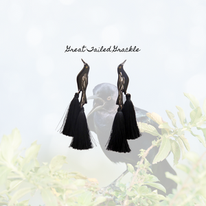 Great-tailed Grackle Earrings