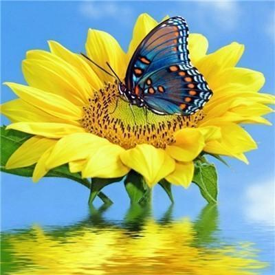 Sunny Butterfly - DIY 5D Diamond Painting - Full Drill-EasyWhim