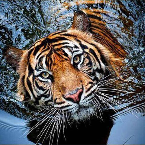 Image of Tiger in Water - DIY 5D Diamond Painting - Full Drill-EasyWhim
