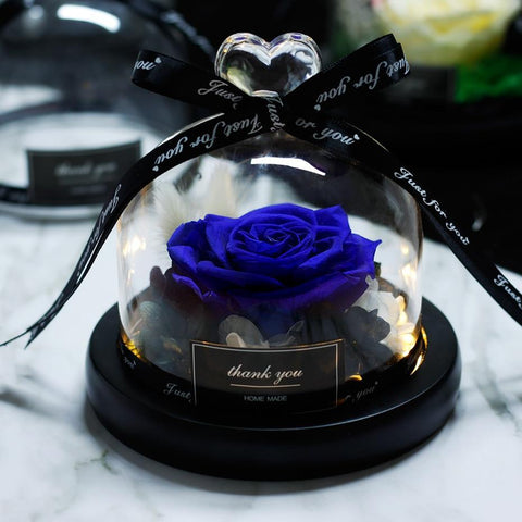Eternal Rose in Glass Dome