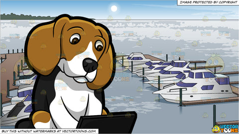 A Beagle Using The Laptop and Boats Docked At A Marina Background