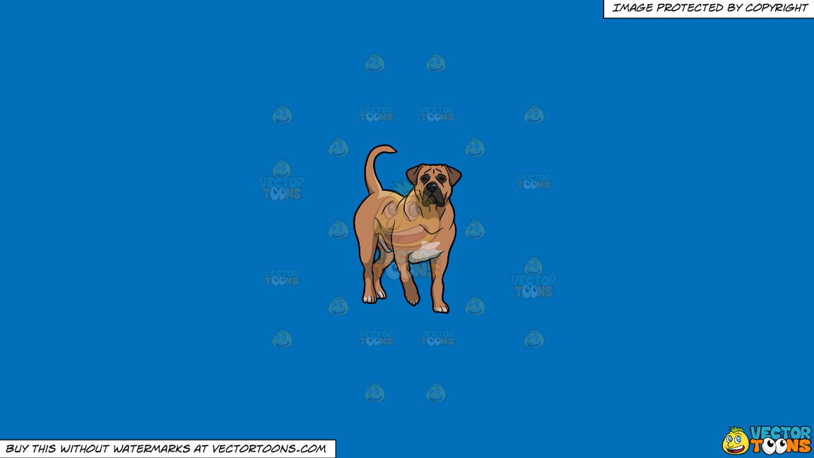 Clipart: A Beautiful Boerboel Dog on a Solid Spanish Blue 016Fb9 Background