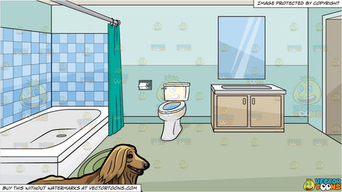 A beautiful golden Afghan hound pet dog and A House Bathroom Background