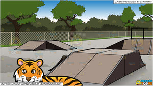 A Beautiful Tiger Lying Down and Bmx Bike Park Background