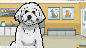 A Bichon Frise Pet Dog and A Veterinary Clinic Background
