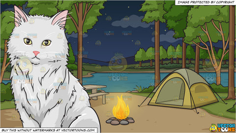 A big fluffy white cat and Campground With Tent At Night Background