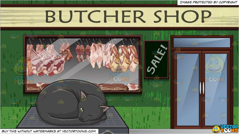 A Black Cat Sleeping On Top Of An Amp and Exterior Of A Butcher Shop Background