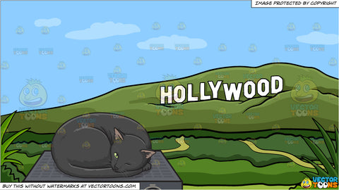 A Black Cat Sleeping On Top Of An Amp and Hollywood Sign During The Day Background