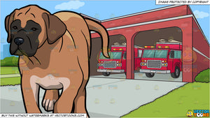 A Bored Boerboel Dog and A Fire Station Background