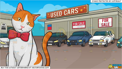 A Cat With A Bow Tie and Used Car Lot Background