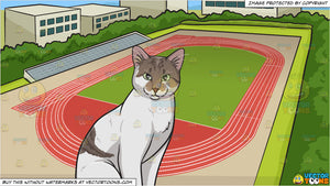 A Cat With Piercing Eyes and Track And Field Background