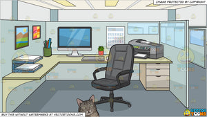 A chubby cat lying down and An Office Work Cubicle Background