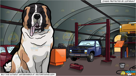 A Clever St Bernard Dog and Inside An Auto Repair Shop With Cars