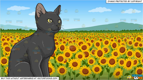 A Contented Black Kitten and A Field Of Sunflowers Background