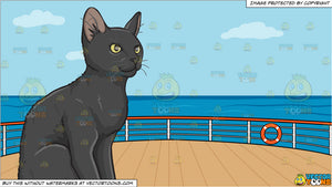 A Contented Black Kitten and Deck Of A Cruise Ship With Deck Chairs Background