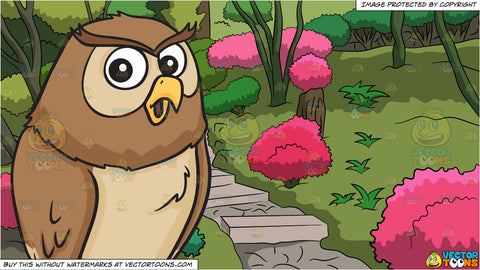 A cooing night owl and Garden Steps Background