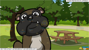A Cuddly English Bulldog Sitting Down and Picnic Tables In A Park Background