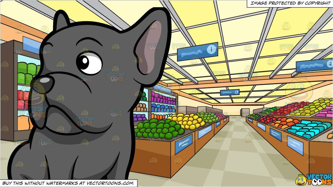 A Curious Gray French Bulldog and Inside A Brightly Lit Grocery Store  Background