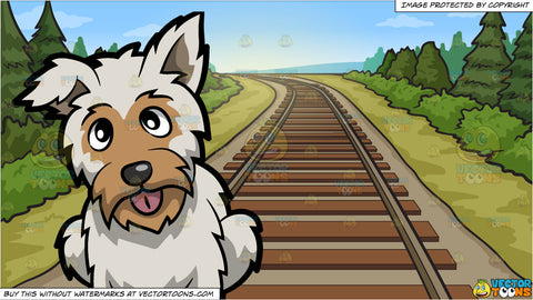 A Curious Yorkshire Terrier and Country Railway Tracks Background