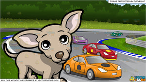 A Cute Chihuahua Standing On All Fours and Car Race Track Background