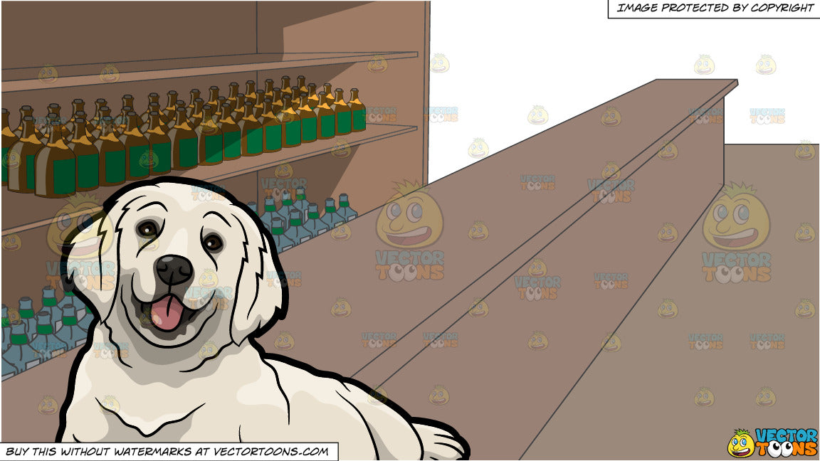 A Cute Golden Retriever Pet Dog and A Long Bar With Lots Of Alcohol Stocks