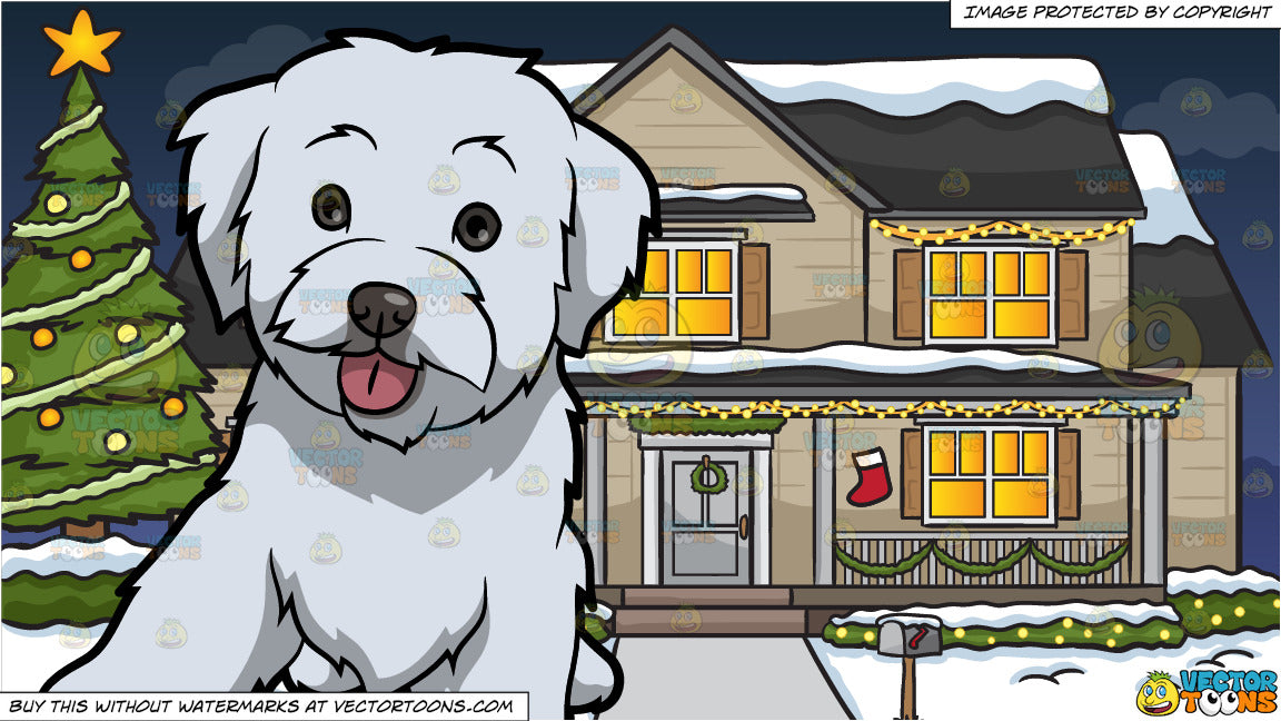 A Cute Maltipoo Dog and A House Decorated For The Christmas Season Background