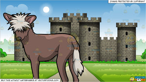 A Fierce Chinese Crested Dog and Exterior Of A Large Castle Background
