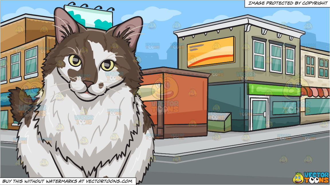 A Fluffy Brown And White Cat and A City Street Corner Background