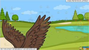 A flying bald eagle and Golf Course Putting Green Background