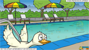A Flying Duck and A Swimming Pool At A Hotel Background