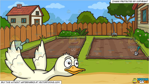 A Flying Duck and Empty Backyard Vegetable Garden Background