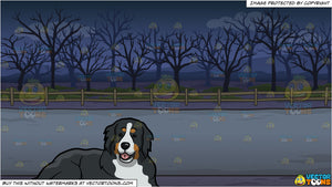 A Friendly Bernese Mountain Dog and A Spooky Road Background