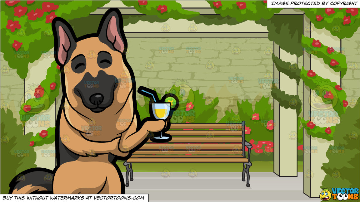 A German Shepherd Enjoying A Cocktail and Bench In A Rose Garden Background