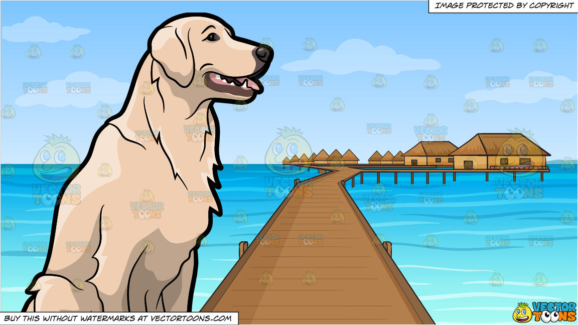 A Golden Retriever Pet Dog and Resort In The South Pacific Background