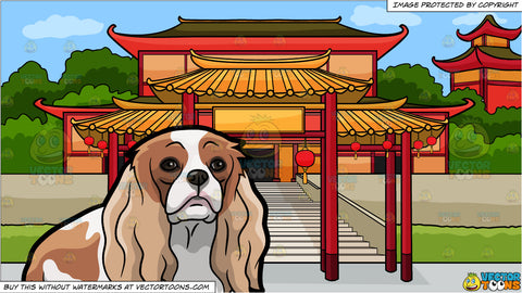 A Lonely Cavalier King Charles Spaniel Pet Dog and A Chinese Temple Background