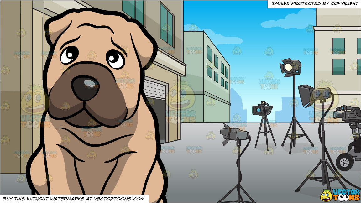 A Lonely Shar Pei Dog and A Film Set Background