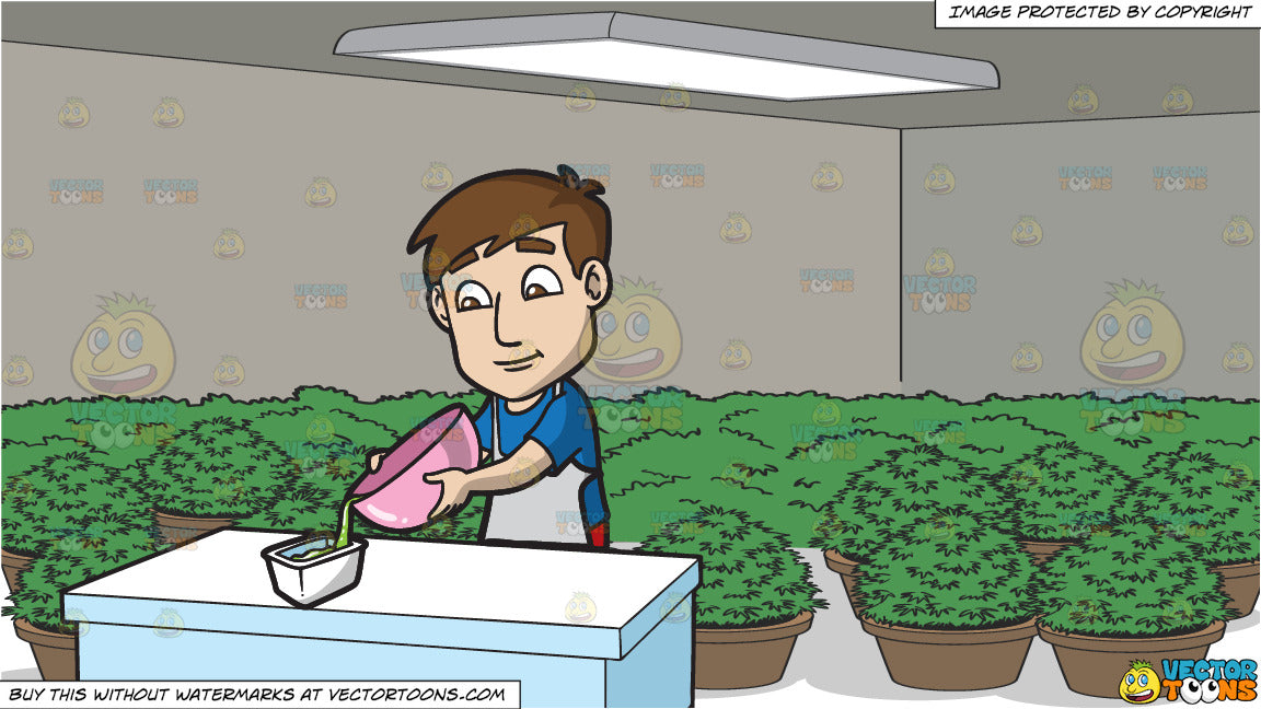 A Man Transferring Slime In A Container and A Grow Room Full Of Potted  Plants