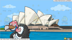 A Mischievous Vulture and Sydney Opera House Background