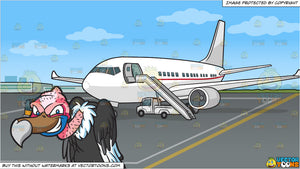 A Naughty Vulture and An Airport Tarmac Background