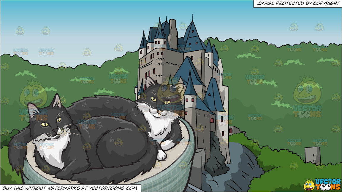 8ee80e61b A pair of black and white cats in a cat bed and Castle On A Mountain ...