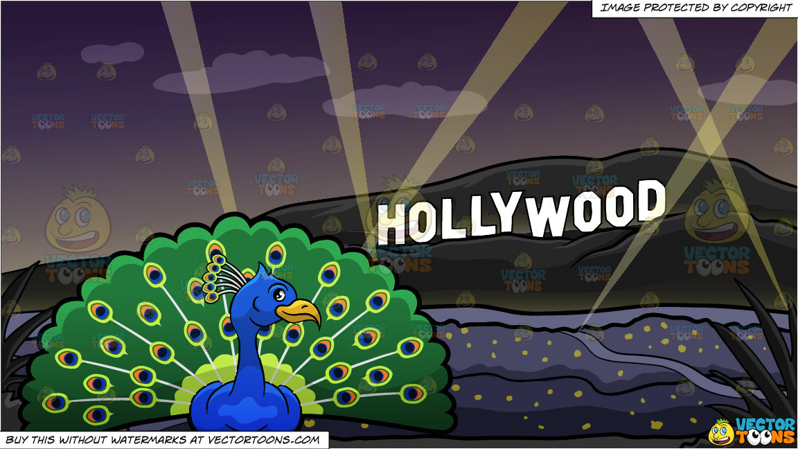 A Peacock Showing Off Its Colorful Feathers and Hollywood Sign At The Night  Background