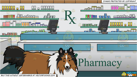 A Playful Shetland Sheep Dog and Prescription Counter Inside A Pharmacy Background