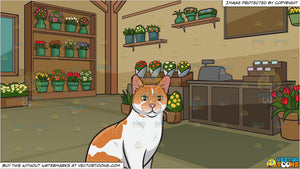 A Pretty Domestic Cat and Inside A Floral Store Background