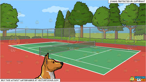 A Quiet Basenji Dog and An Outdoor Tennis Court Background