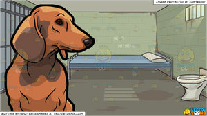A Quiet Dachshund Dog and Jail Cell Background