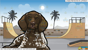 A Resting German Shorthaired Pointer Pet Dog and Skateboard Park Background
