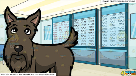 A Sad Looking Scottish Terrier and An Optical Shop Background