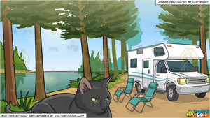 A Serious Black Cat Sitting Still and An Rv Parked By The River Background